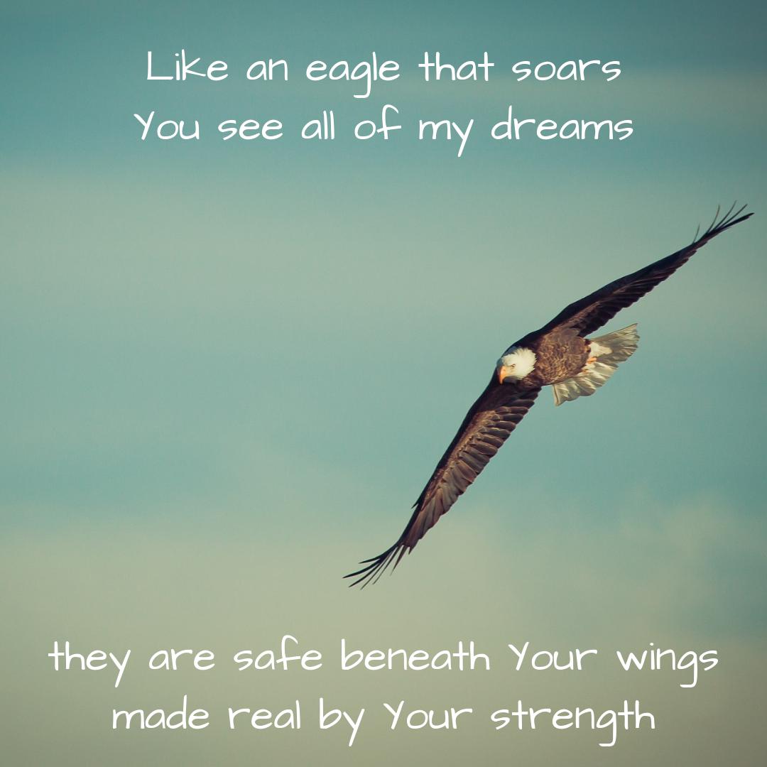 Wherever_ Eagle